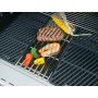 Outdoorchef DGS rooster RVS